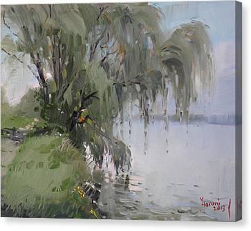 The Tree By Niagara River Canvas Print by Ylli Haruni