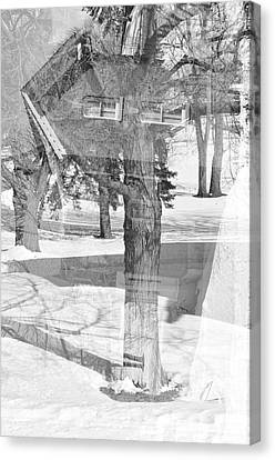 The Tree House Canvas Print by Tom Druin