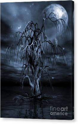 The Tree Of Sawols Cyanotype Canvas Print by John Edwards