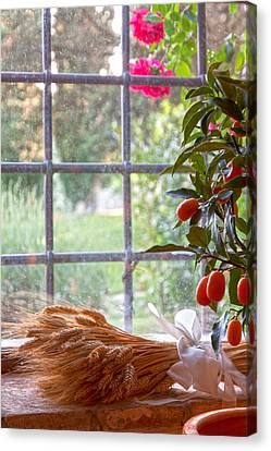 The Tuscan Window Canvas Print by Adrian Alford