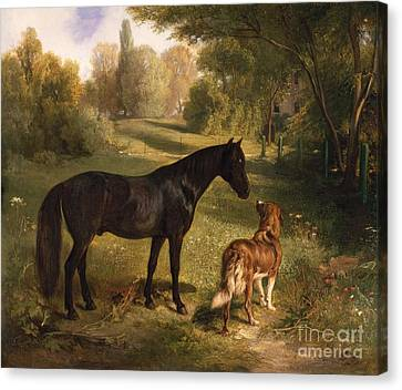 The Two Friends Canvas Print by Adam Benno