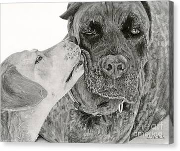 The Unconditional Love Of Dogs Canvas Print by Sarah Batalka