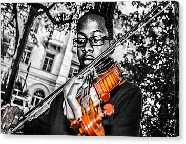 The Violinist  Canvas Print by Steven  Taylor