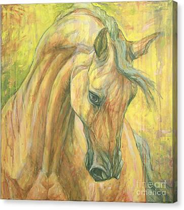 The Warm-up Canvas Print by Silvana Gabudean