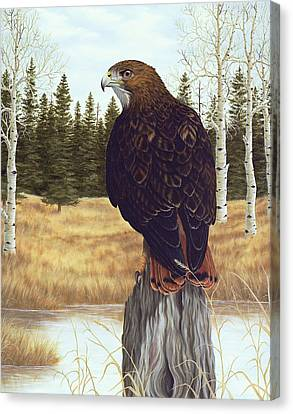 The Watchful Eye Canvas Print by Rick Bainbridge