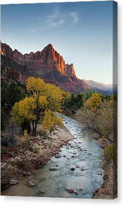 The Watchman Canvas Print by Andrew Soundarajan