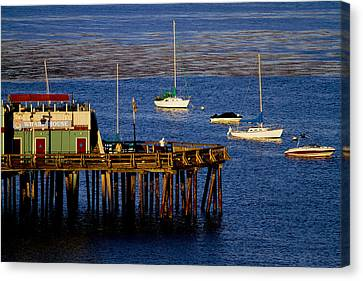 The Wharf Canvas Print by Tom Kelly