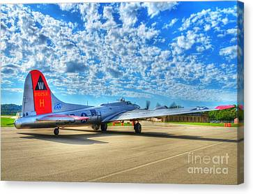 The Wild Blue Yonder Canvas Print by Mel Steinhauer