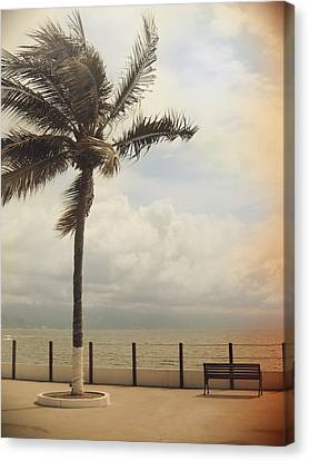 The Wind In My Hair Canvas Print by Laurie Search