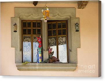 The Window Of Cats Canvas Print by Sophie De Roumanie