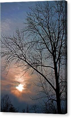 The Winter Skies Canvas Print by Rhonda Humphreys