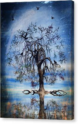 The Wishing Tree Canvas Print by John Edwards