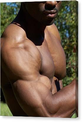 The Wonder Of Biceps Canvas Print by Jake Hartz