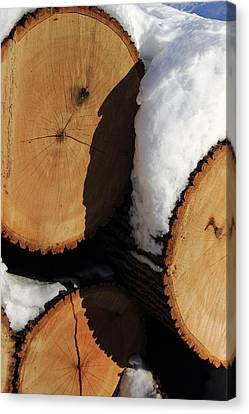 The Woodpile Canvas Print by Frank Romeo