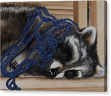 The Yarn Won Canvas Print by Joy Bradley