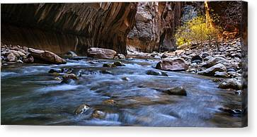 The Zion Narrows Panorama Canvas Print by Andrew Soundarajan