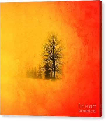 Thee Tree  Canvas Print by Mark Ashkenazi