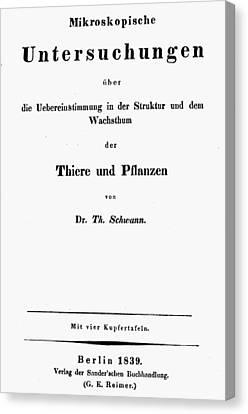 Theodor Schwann (1810-1882) Canvas Print by Granger
