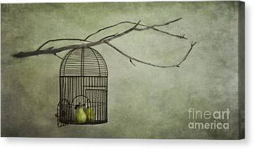 There Is A World Outside Canvas Print by Priska Wettstein
