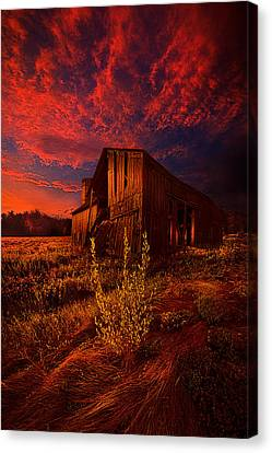 There Was A Time Canvas Print by Phil Koch