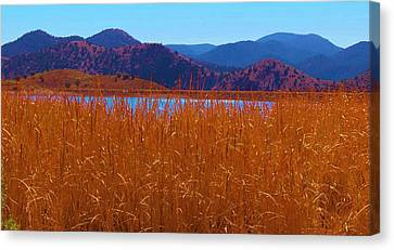 There's A Lake Over There Canvas Print by Feva  Fotos