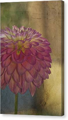There's Always Next Year Canvas Print by Trish Tritz