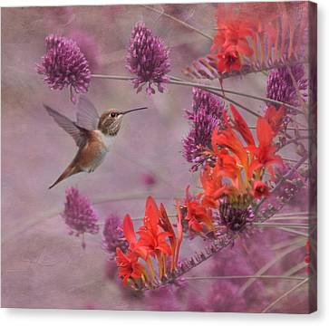 There's Purple In My Crocosmia Canvas Print by Angie Vogel