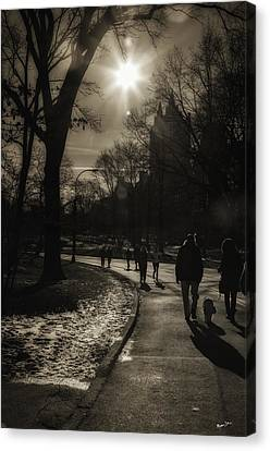 They Come To Central Park Canvas Print by Madeline Ellis