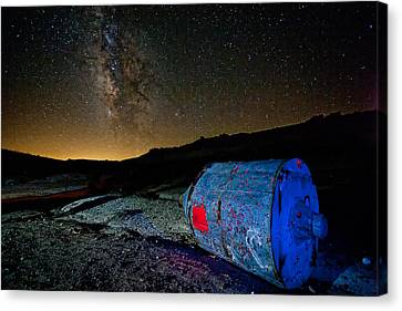 They've Landed Canvas Print by Peter Tellone