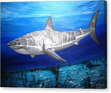 This Is A Shark Canvas Print by Kevin F Heuman