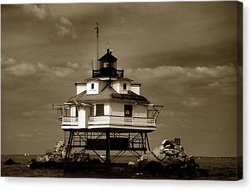 Thomas Point Shoal Lighthouse Sepia Canvas Print by Skip Willits