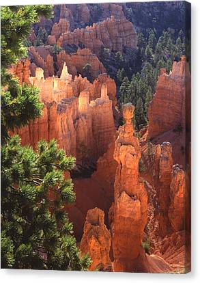 Thor's Hammer Canvas Print by Ray Mathis