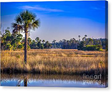 Those Quiet Sounds Canvas Print by Marvin Spates