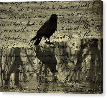 Thoughts Of Poe Canvas Print by Gothicolors Donna Snyder