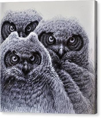 Three Amigos Canvas Print by Rick Hansen