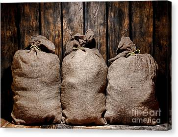 Three Bags In A Warehouse Canvas Print by Olivier Le Queinec