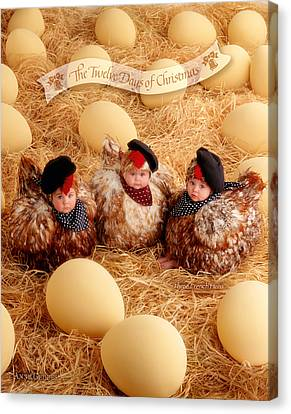 Three French Hens Canvas Print by Anne Geddes