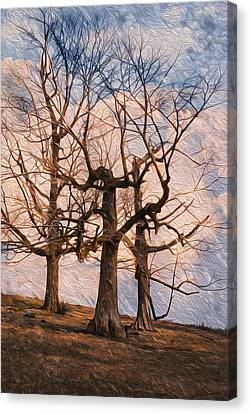 Three On The Hill - Color Canvas Print by Jack Zulli