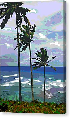 Three Palms Canvas Print by Douglas Simonson