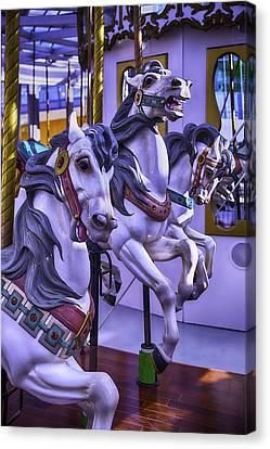Three Wild Horses Canvas Print by Garry Gay