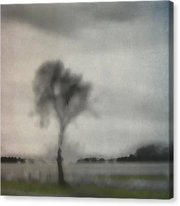 Through A Train Window Number 2 Canvas Print by Carol Leigh