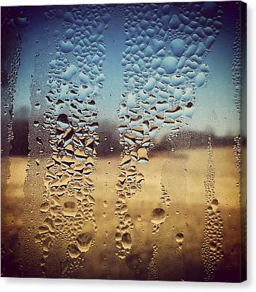 Through Glass 1 Canvas Print by Natalie Lizza