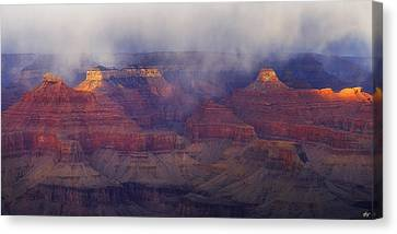 Through The Storm Canvas Print by Peter Coskun