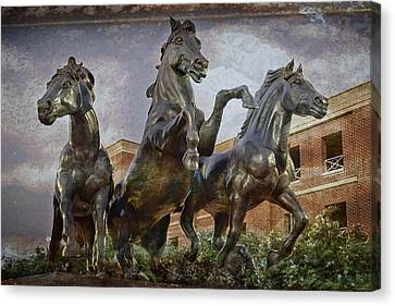 Thundering Mustangs Canvas Print by Joan Carroll