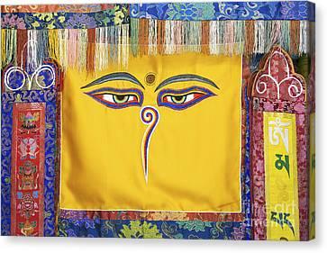 Tibetan Eyes Canvas Print by Tim Gainey