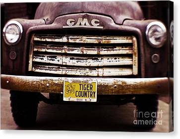 Tiger Country - Purple And Old Canvas Print by Scott Pellegrin