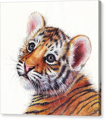 Tiger Cub Watercolor Painting Canvas Print by Olga Shvartsur