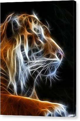 Tiger Fractal 2 Canvas Print by Shane Bechler