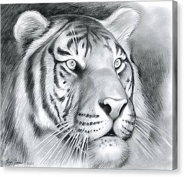 Tiger Canvas Print by Greg Joens