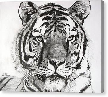 Tiger On Piece Of Paper Canvas Print by Kevin F Heuman